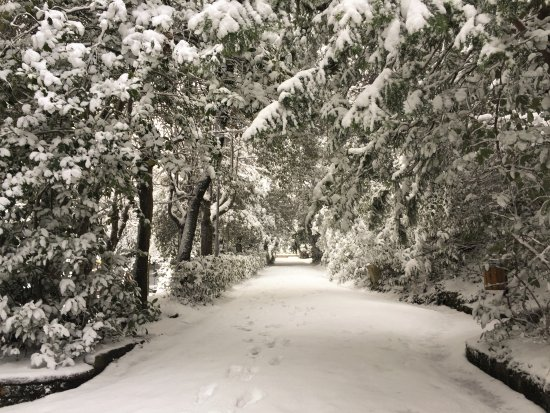 Arcevia, Italia: Giardino Giacomo Leopardi e la magia della neve