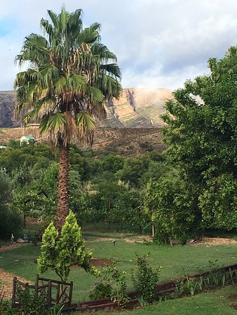 Calitzdorp, South Africa: Karoo Life Bed & Breakfast