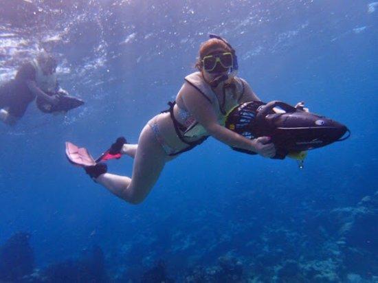 Savaneta, Aruba: Aruba Bob Rocks!!!