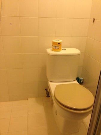 Apple Hotel: 洗澡時衛生紙沒地方可放