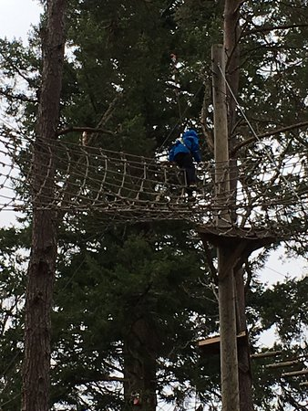 Эвимор, UK: Great experience had by all at Treezone Aviemore! Big thanks to Chris one of the instructors for