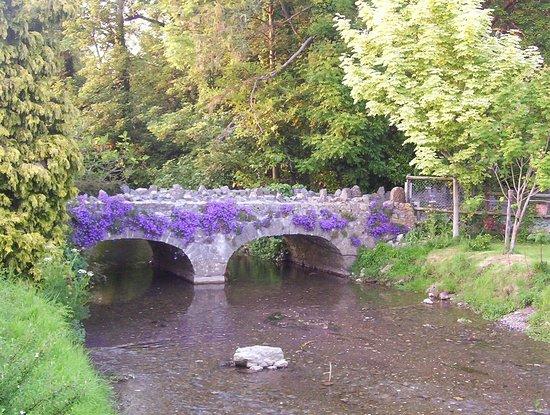 enter cheddar bridge touring park
