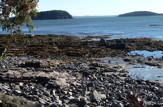 Shore Path Cottage: Private access to the beautiful Maine coast with a view of the Porcupine Islands.