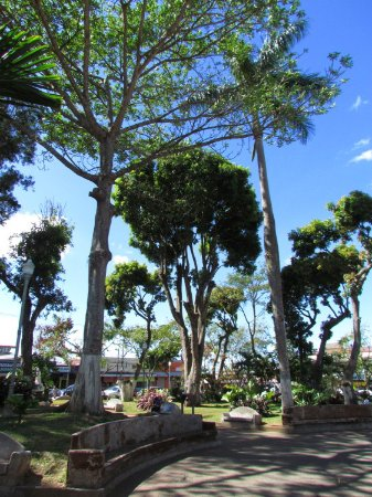 Grecia, Kosta Rika: The gardens in the town center