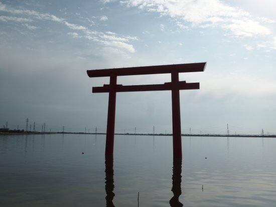 Kashima Jingu Torii