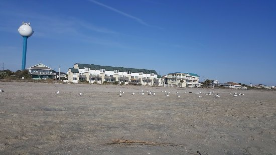 Tybee Island Beach: The quiet beach in early morning.