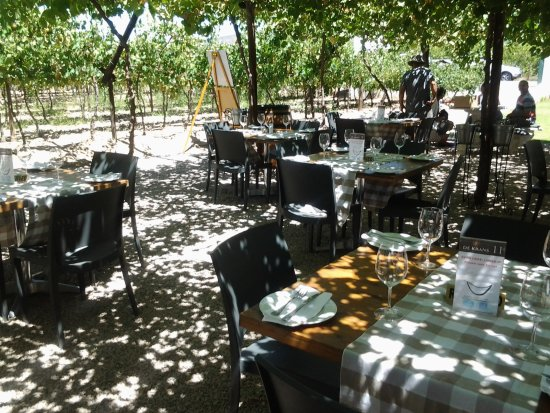 Calitzdorp, South Africa: Shaded seating under vine-covered pergolas