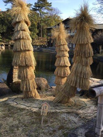 Tokugawa Garden: photo5.jpg