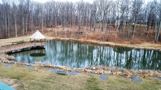 Pretty Gazebo on the Pond