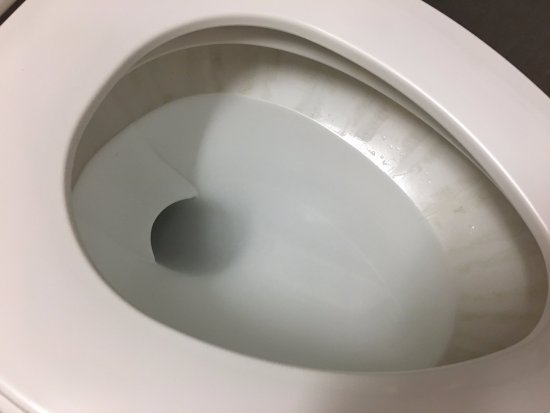 Morehead City, NC: stains in the toilet bowl