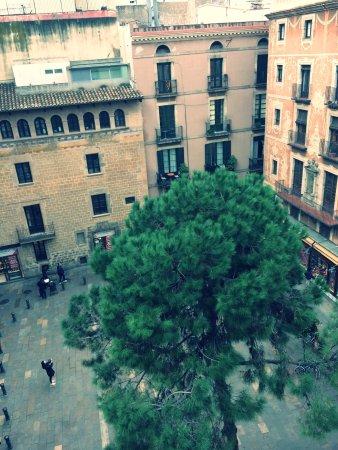 Photo de el jardi barcelone tripadvisor - Hotel el jardi barcelona ...