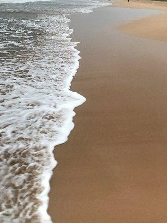AVANI Bentota Resort & Spa 사진
