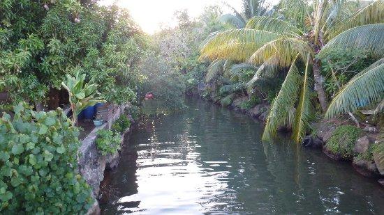 Uturoa, Polinesia Francesa: Возле отеля.