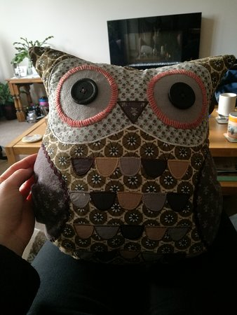 Hinton St George, UK: Owl Cushion purchased here