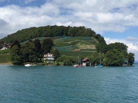 Thun, İsviçre: Stunning views on the boat trip!