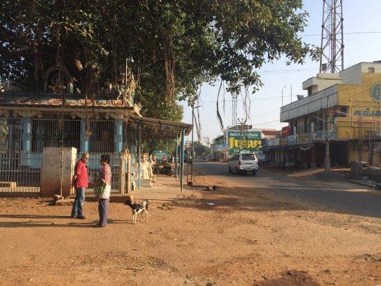 The Bangala : photo2.jpg