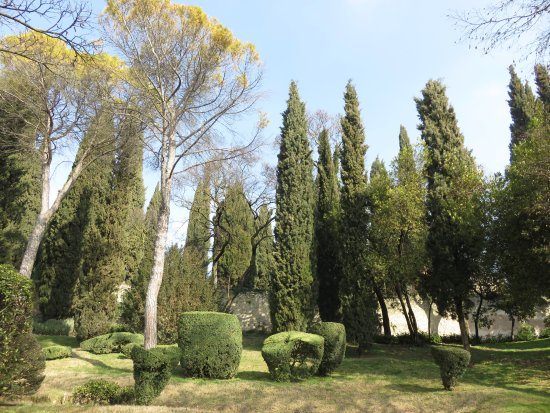 Alberi picture of palazzo giardino giusti verona tripadvisor