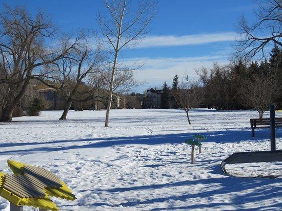 Riley Park : Lots of snow
