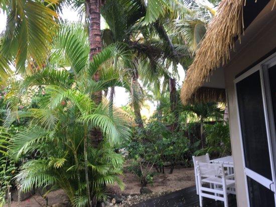 Arorangi, Cook Islands: photo1.jpg