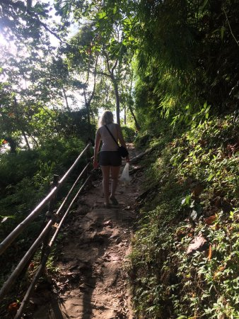 Monkey Trail: Going over the top