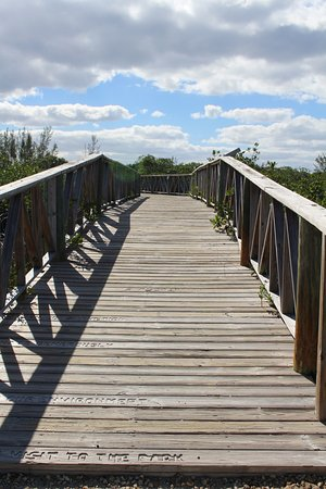 Gold Rock Beach : Ponte para chegar a trilha