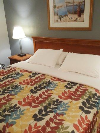 The Islander Motel: Newly Upgrade Room