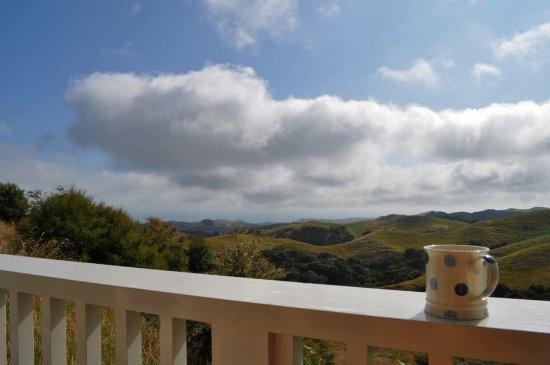 Te Awanga, New Zealand: photo6.jpg