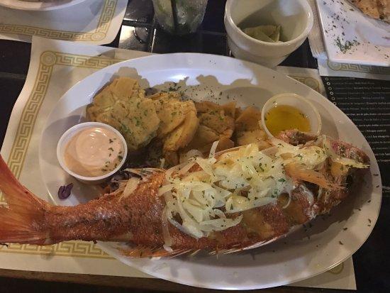 Mahi Mahi Restaurant and Bar: photo4.jpg