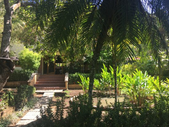 Hotel Las Gaviotas: photo2.jpg
