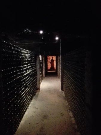 "Pirque, Chile: IMG_20170205_120358_large.jpg"""
