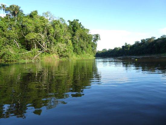 Tapiche Reserve: On the river