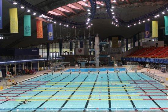 La piscine olympique photo de olympic park parc olympique montr al tripadvisor - La piscine olympique montpellier ...