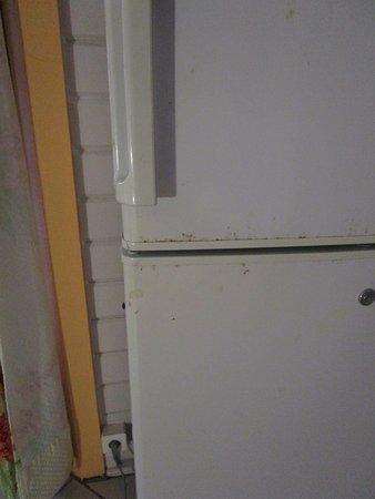 Capesterre, Guadeloupe: Kühlschrank im Zimmer