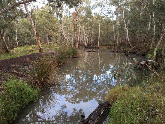 Nhill, Australia: Jaypex Park