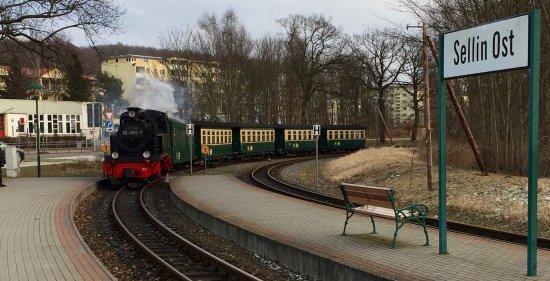 Selliner Kleinbahnhof: Rasender Roland am Haltepunkt Selig Ost