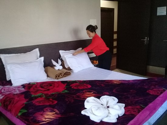 Forbesganj, India: AC DELUXE ROOM