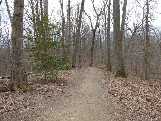 McLean, VA: Trail