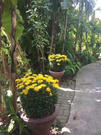 Furama Resort Danang Φωτογραφία