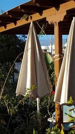 parasol en ingles