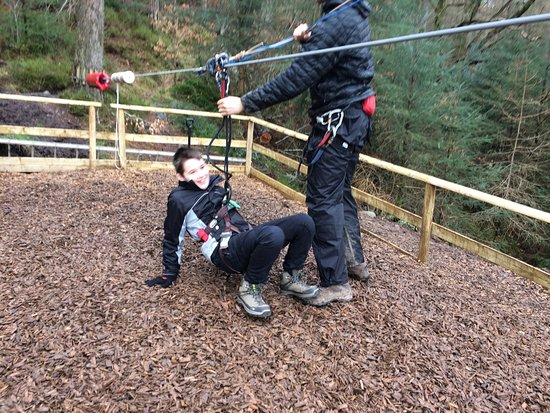 Go Ape Aberfoyle: photo3.jpg