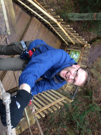 Go Ape Aberfoyle: photo4.jpg