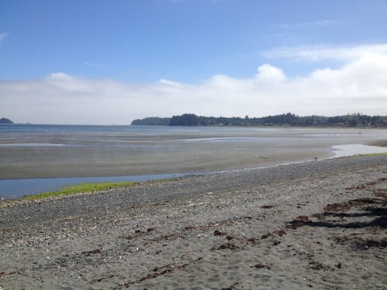 Port Hardy, Kanada: The beach at low tide