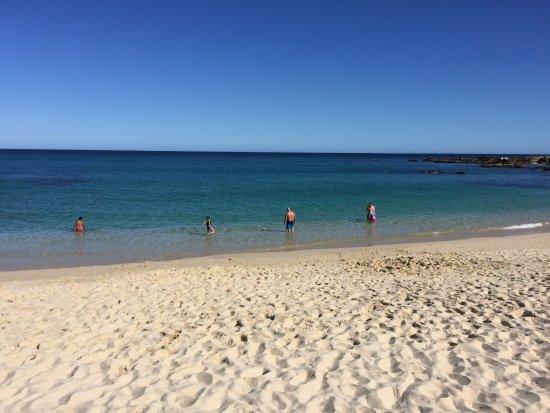 The Beach At Playa Palmilla Picture Of San Jose Del Cabo Tripadvisor