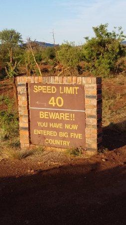 Foto de Madikwe Game Reserve