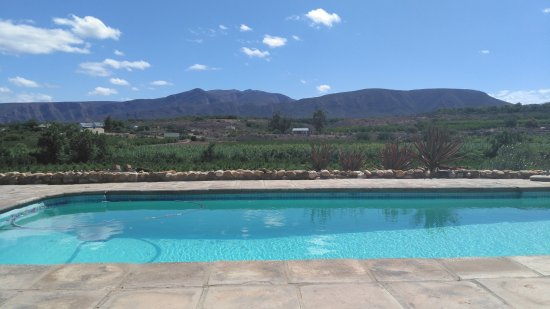 Calitzdorp, South Africa: The pool area