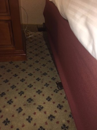 Harrah's Resort Atlantic City: Protruding bed frame