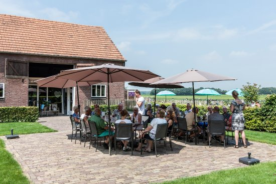 Middelbeers, Holland: het landelijke terras