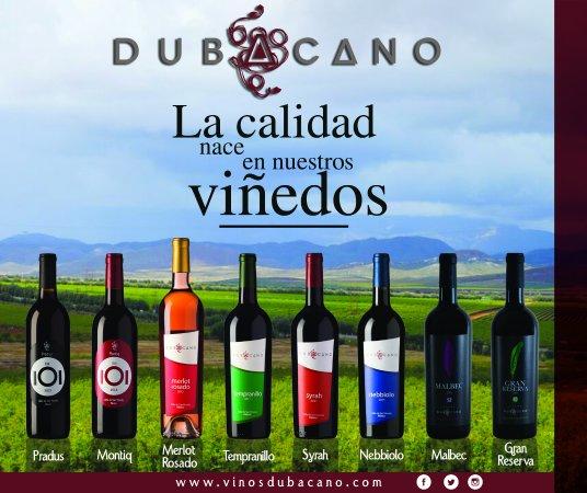 Valle de Guadalupe, México: Nuestros vinos