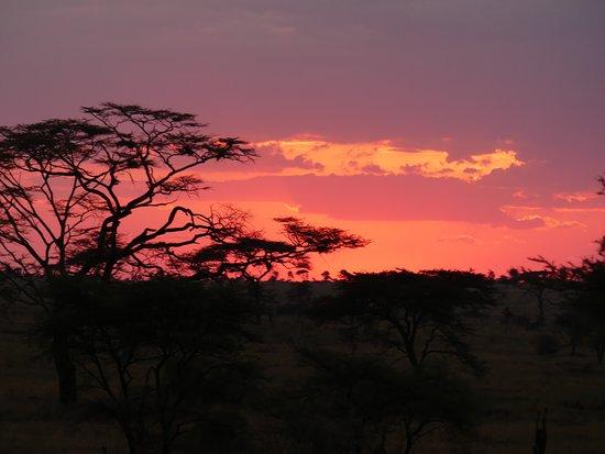 Región de Arusha, Tanzania: Bon a va finir pas celle la.. Mais vous en ferrez d'aussi belle.