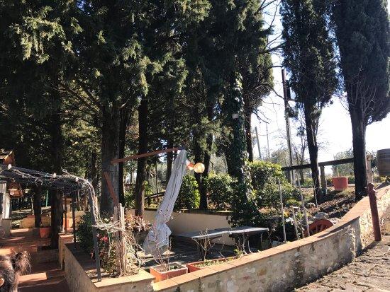 San Donato in Poggio, อิตาลี: photo4.jpg